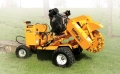 Where to rent CARLTON STUMP GRINDER 2 in Burton MI